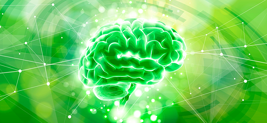 Concept with a brain on a bright green background, representing design thinking